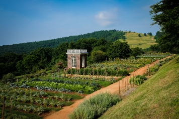 Jefferson Vegetable Garden